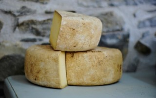 a blog about cheese